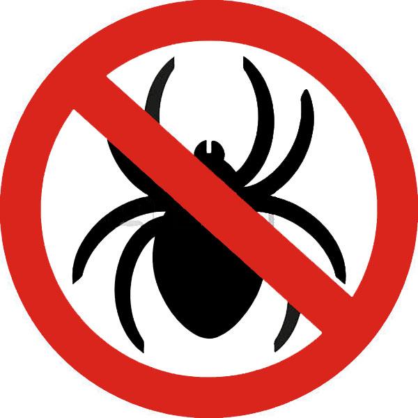 no-spiders