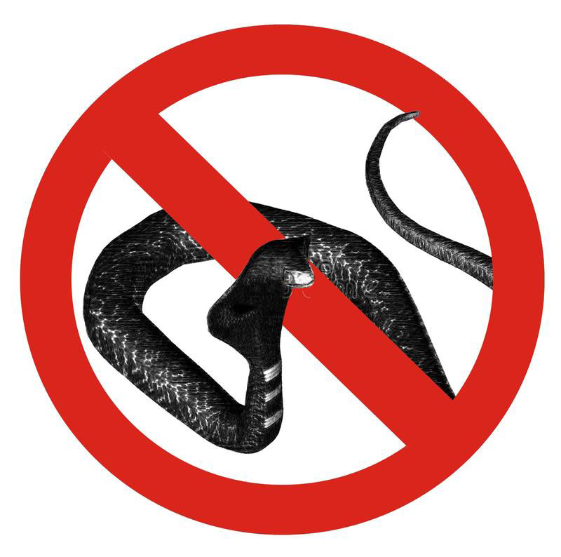 no-snakes